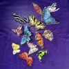 Butterfly Splash T-Shirt