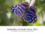 Butterflies of South Texas 2015