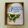 Swallowtail Pin