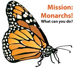 Mission Monarch Logo x 258