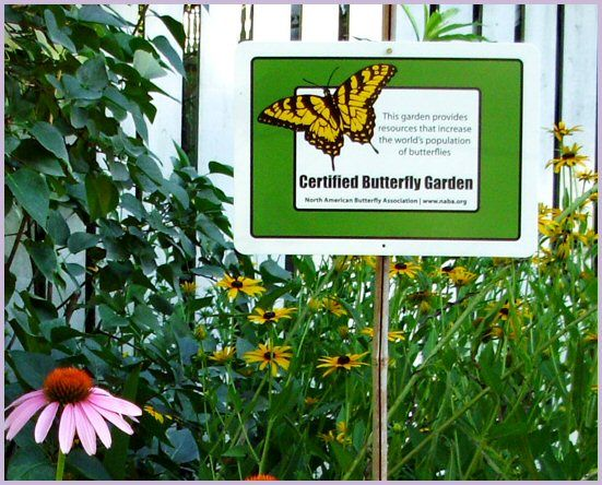 Attractive Get Started: Butterfly Garden Guide